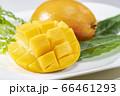 新鮮で美味しいマンゴー 66461293