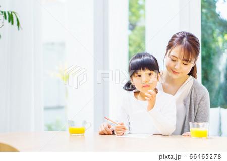 リビングで宿題をやる娘を見守る母 66465278