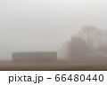 朝霧の中 66480440