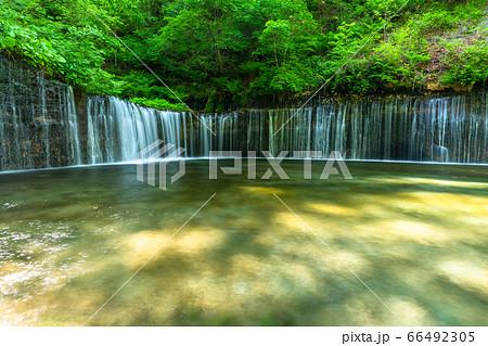 《長野県》白糸の滝・軽井沢の清流 66492305