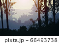 Natural forest mountains horizon hills silhouettes of trees. Evening Sunrise and sunset. Landscape wallpaper. Illustration vector style. Colorful view background. 66493738