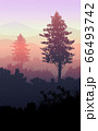 Natural forest mountains horizon hills silhouettes of trees. Evening Sunrise and sunset. Landscape wallpaper. Illustration vector style. Colorful view background. 66493742