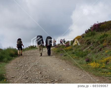 ハイキング 登山 66509067