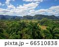 キューバのビニャーレス渓谷 66510838