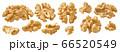 Raw shelled walnut set isolated on white background 66520549