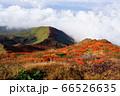 秋田県 駒ケ岳の男岳山頂から望む美しい紅葉と雲海、田沢湖 66526635