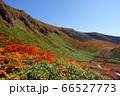 秋田県 駒ケ岳のムーミン谷の紅葉と駒池 66527773