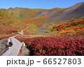 秋田県 駒ケ岳のムーミン谷から望む紅葉と男岳 66527803