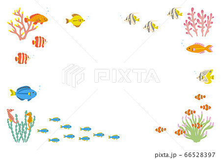熱帯魚のフレーム 背景素材 白 66528397