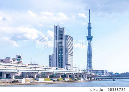 汐入公園からの眺めた東京スカイツリー 青空 66533725