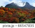 那須 茶臼岳と紅葉真っ盛りの姥が平 66547835