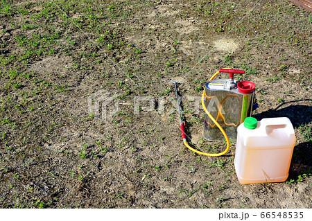 雑草と除草剤 66548535