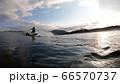 海と波とサーファー 66570737