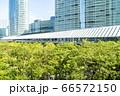 緑の多いオフィス街の風景 66572150