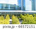 緑の多いオフィス街の風景 66572151