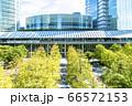 緑の多いオフィス街の風景 66572153