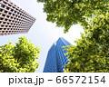 高層ビルを見上げるオフィス街の風景 66572154