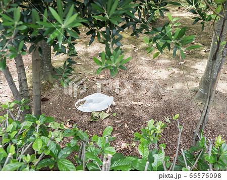 【環境問題】地面にビニール袋が捨てられている様子 広角 66576098