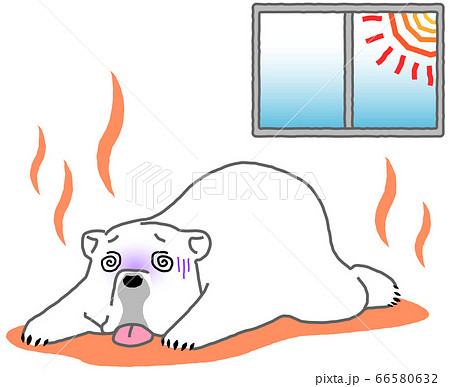 バテて倒れ込むシロクマ - 熱中症・屋内・暑さ 66580632