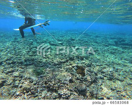 沖縄のリーフで波を待つサーファー 66583068