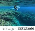 沖縄のリーフで波待ちするサーファー 66583069