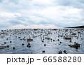Apocalypse sea view. Destroyed bridge. Armageddon concept. 3d rendering. 66588280