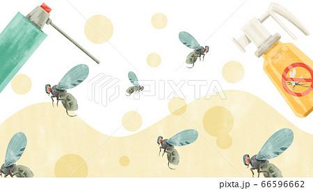 殺虫剤でハエ退治水彩手書きイラスト 66596662
