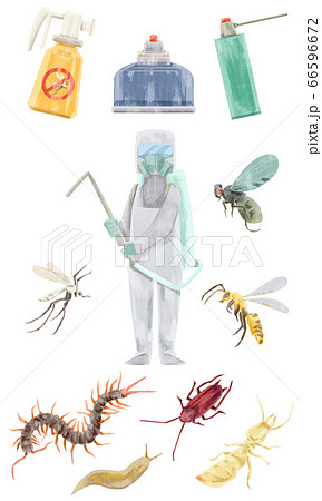 駆除作業員と害虫の水彩手描きイラスト 66596672