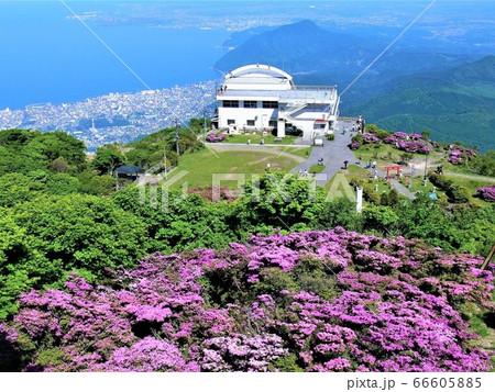 鶴見岳頂上から別府市街地と別府湾一望 66605885
