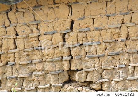 ひび割れた土壁(唐招提寺/奈良県奈良市五条町) 66621433