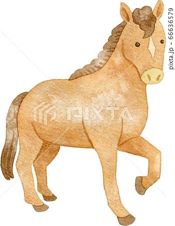 片足をあげる馬 66636579