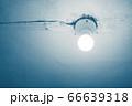 Energy saving lamp 66639318