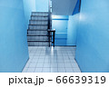 The stairs in the apartment have blue walls 66639319