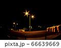 小笠原 父島 夜の港の風景 66639669