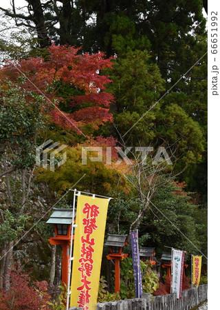 和歌山の熊野那智大社の参道の紅葉 66651992