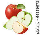 Fresh red and green apples isolated on white background 66659672