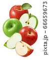 Red and green apples isolated on white background 66659673