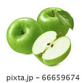 Green apples isolated on white background. Granny Smith cultivar 66659674