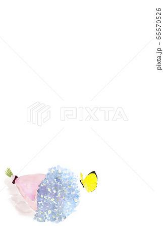 黄色の蝶々と花束の水彩イラスト絵葉書素材 66670526