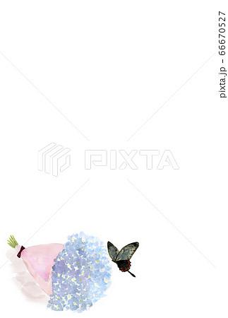 黒アゲハと花束の水彩イラスト絵葉書素材 66670527