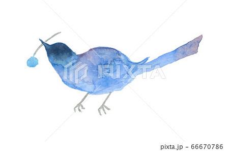 水彩で描いた木の実をくわえた青い鳥のイラスト 66670786