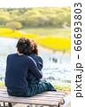 ひたち海浜公園ネモフィラ 青の世界 66693803