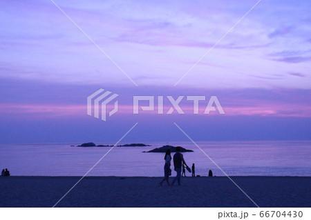 海 ビーチ 散歩 66704430