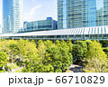 緑の多いオフィス街の風景 66710829