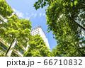 高層ビルを見上げるオフィス街の風景 66710832