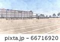 学校 運動会 綱引き 観客有り 建物有り イラスト28 66716920