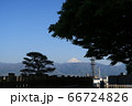 甲府市、舞鶴城公園から望む富士山 66724826