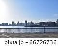 豊洲ぐるり公園から見た晴海埠頭 66726736