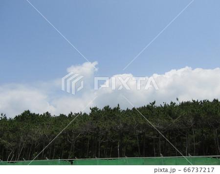 夏の白いr雲と青い空 66737217