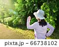早朝に太陽の方角へジョギングする女性 01 66738102